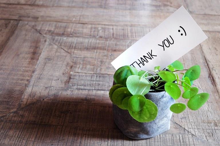 thank-you-3690115_960_720.jpg