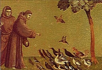 Frans og fuglene