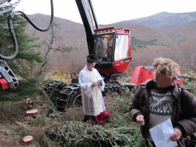 Katolikkerskogen