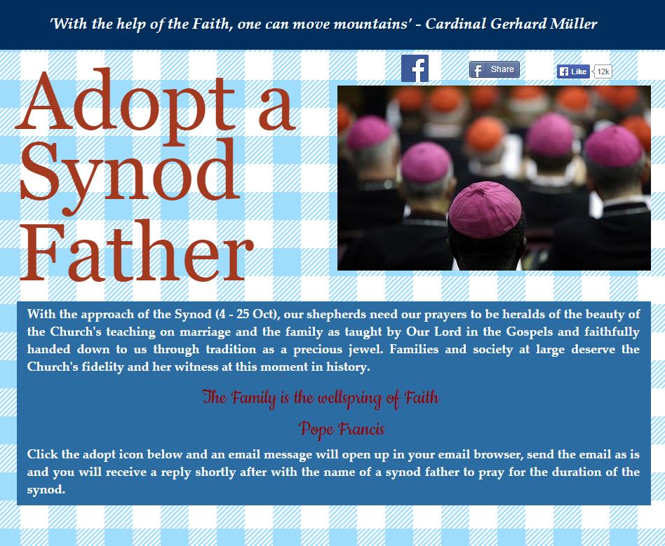 adoptasynodfather.png