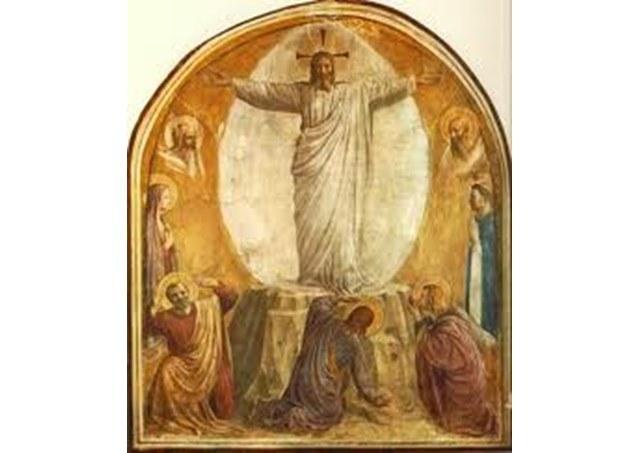 Pavens angelus 14.03.jpg