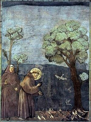 Frans av Assisi taler til fuglene, av Giotto..jpg