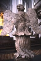 Engel bakfra
